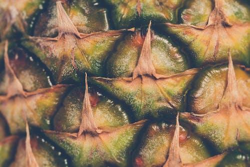 คลังภาพถ่ายฟรี ของ ผลไม้, ผลไม้เมืองร้อน, สัปปะรด, เนื้อผ้า