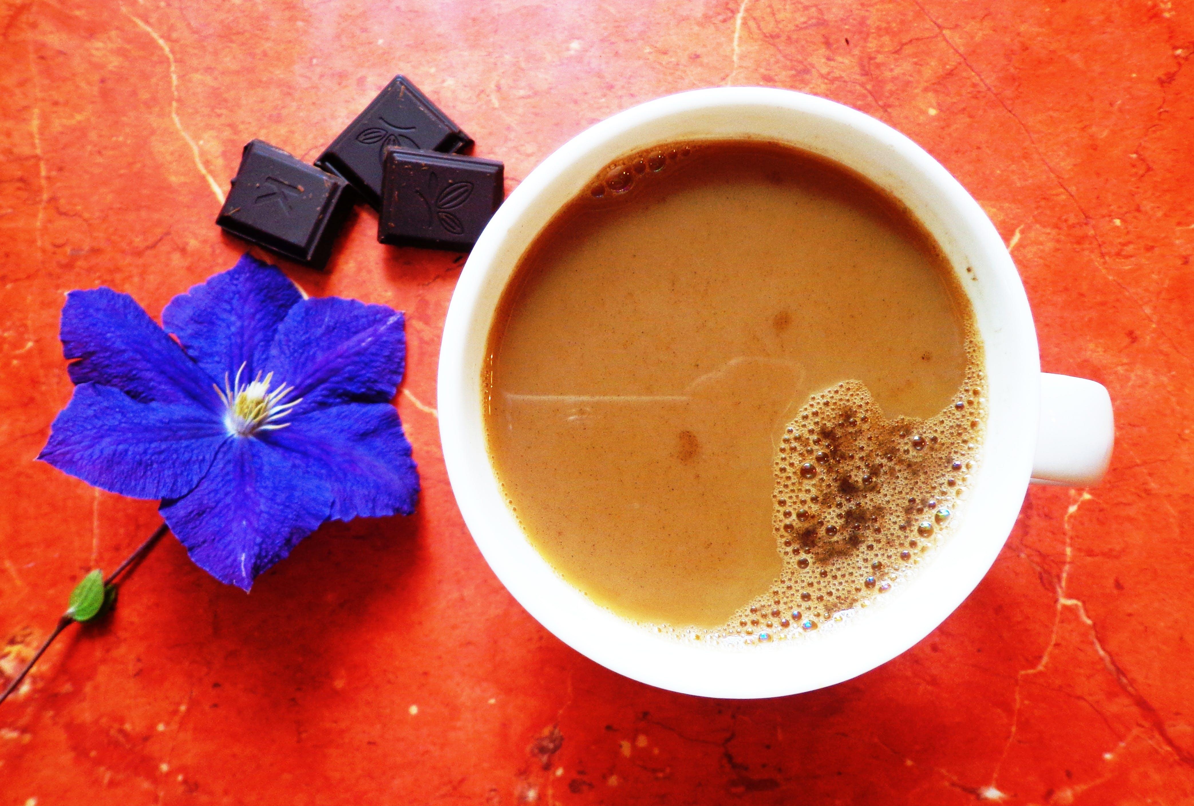 Бесплатное стоковое фото с кофе, красивые цветы, ранее утро, свежий кофе