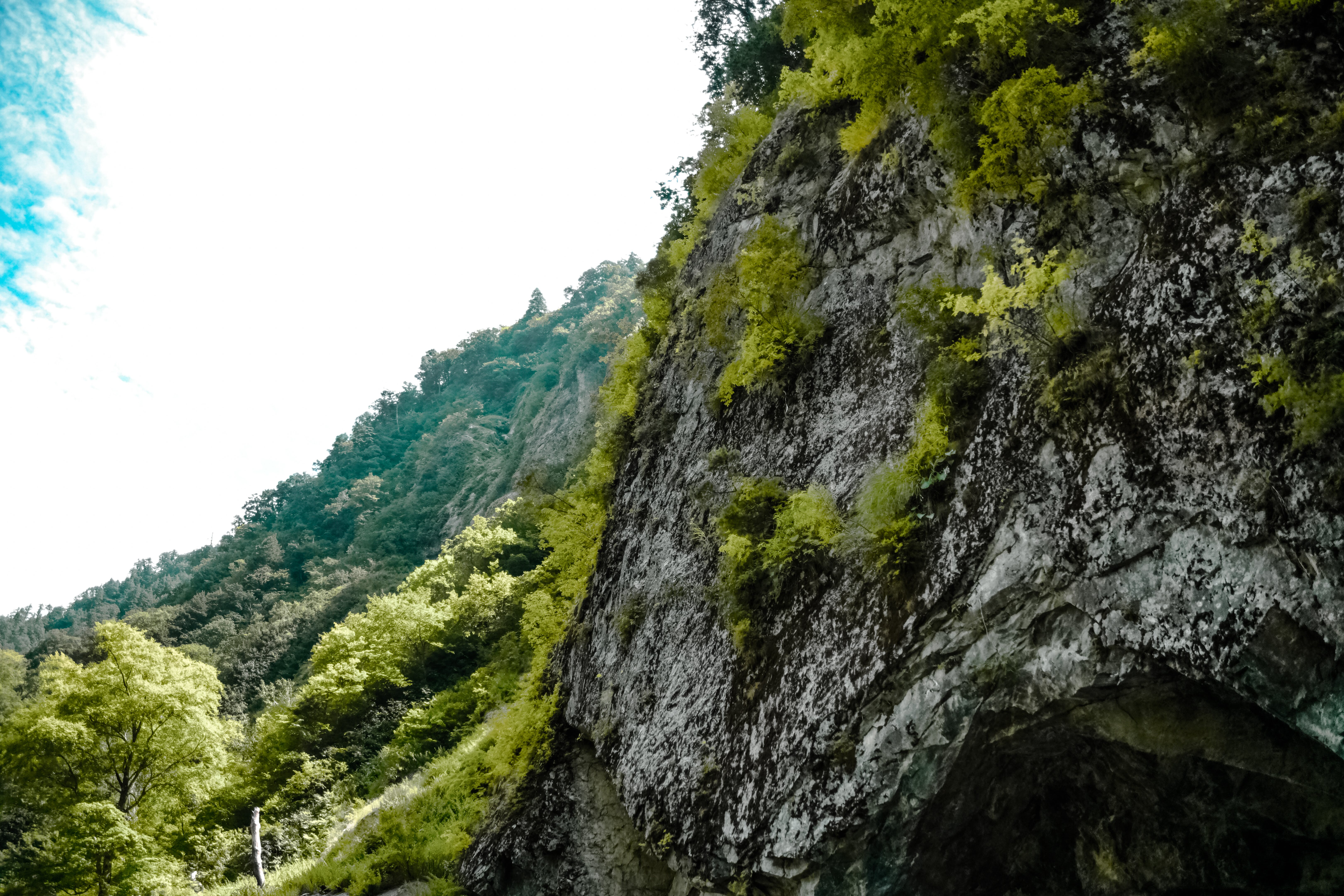 Low Angle Photography of Gray Mountain Side Covered With Green Leaves Under White Sky at Daytime