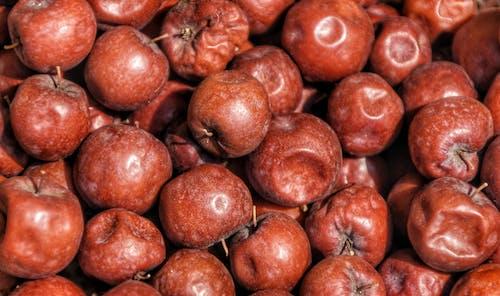 Fotobanka sbezplatnými fotkami na tému #dryfruits
