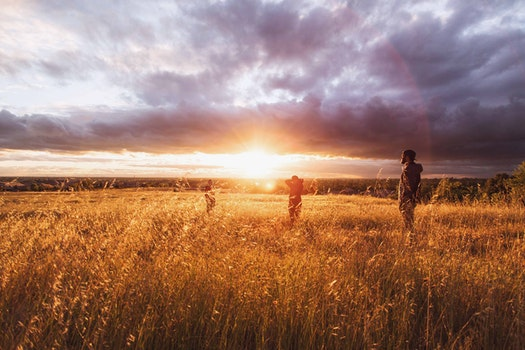Free stock photo of dawn, nature, sunset, people