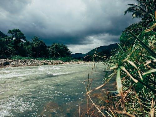 Free stock photo of green, moody sky, philippines