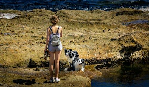 Kostnadsfri bild av flicka, flod, hav