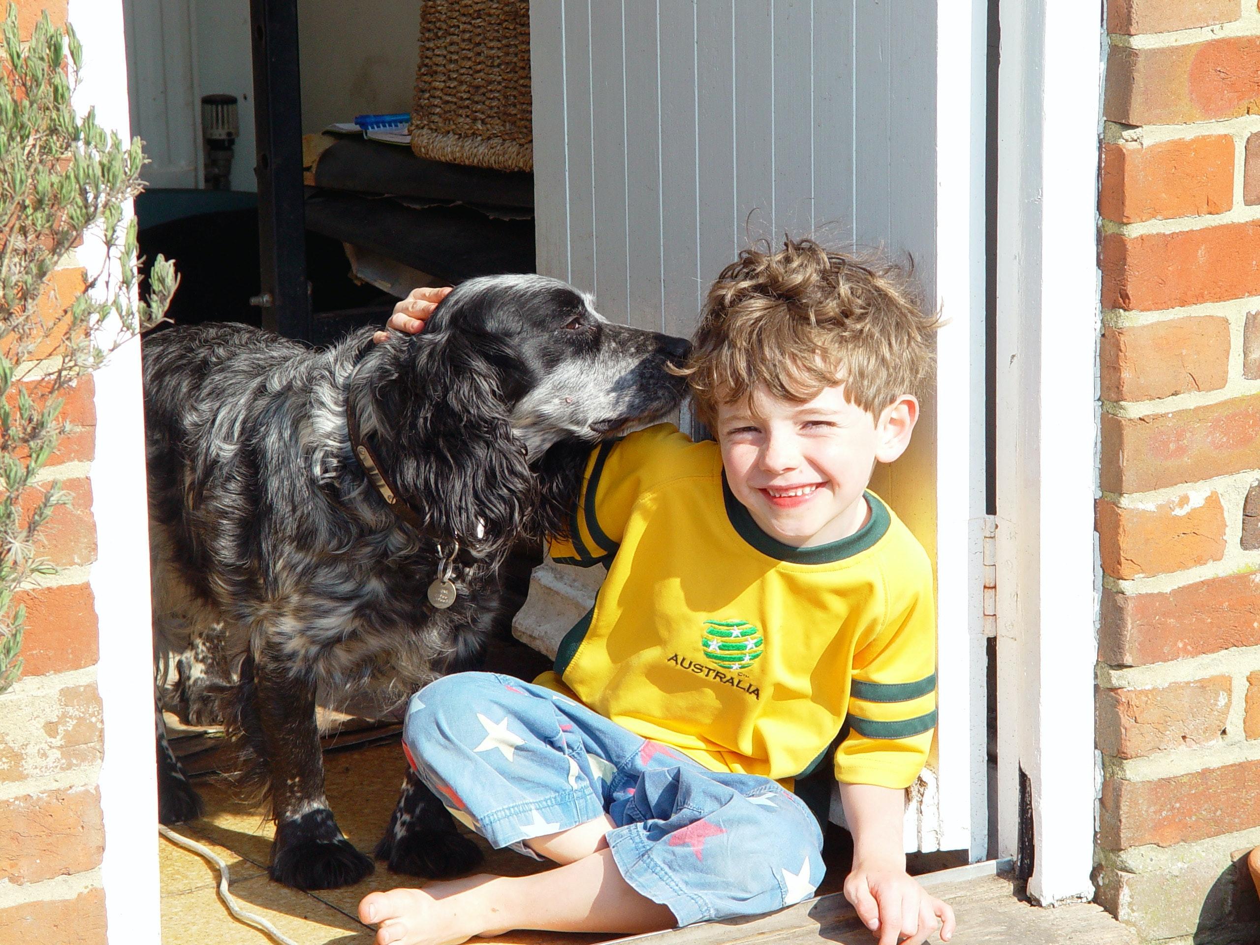 Free stock photo of Boy with dog, friendly dog, kid with dog