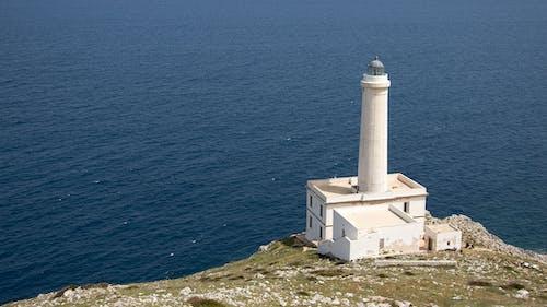 çim, deniz, deniz feneri, deniz kıyısı içeren Ücretsiz stok fotoğraf