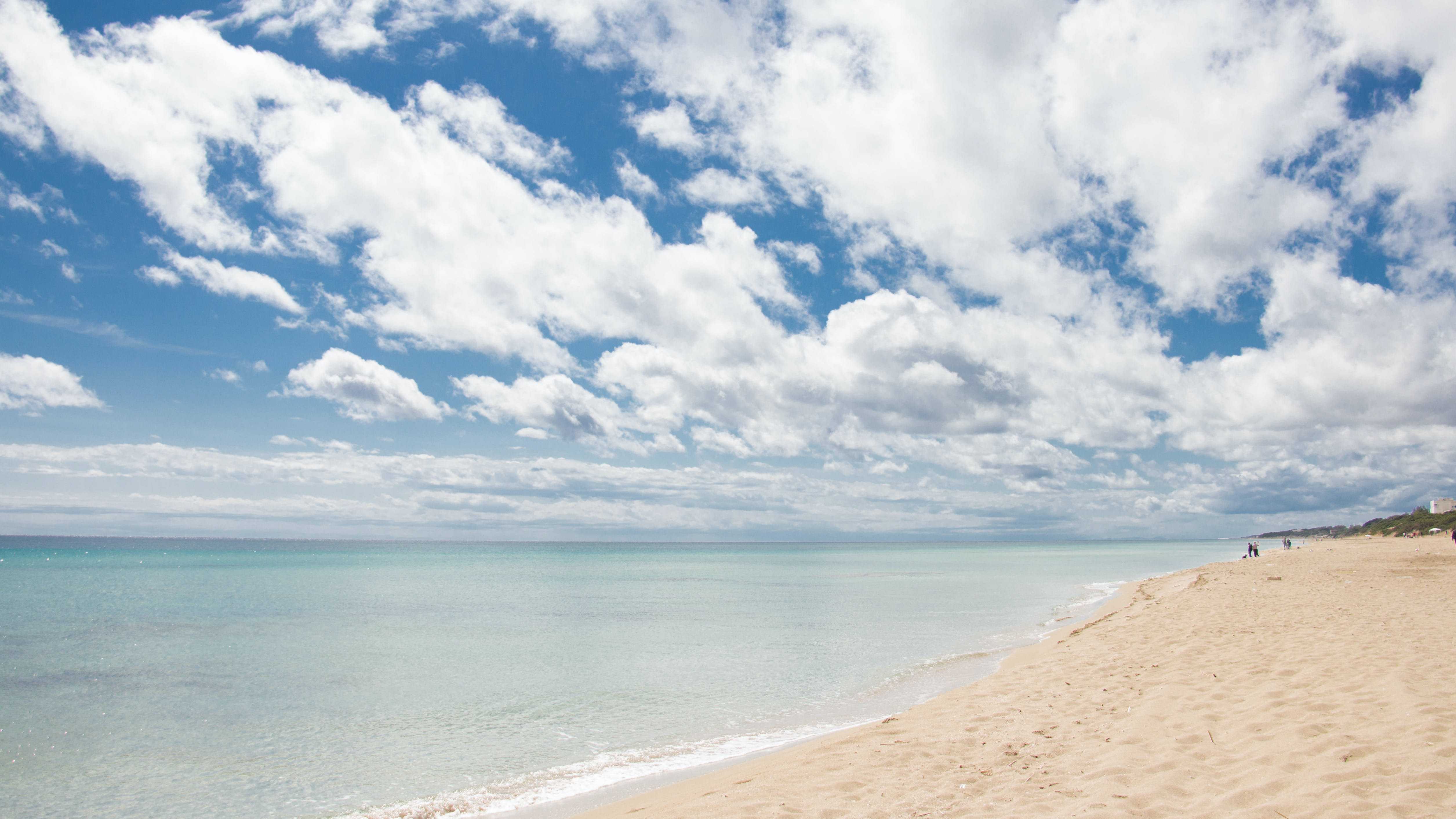 Panoramic Photography of White Sand Beach