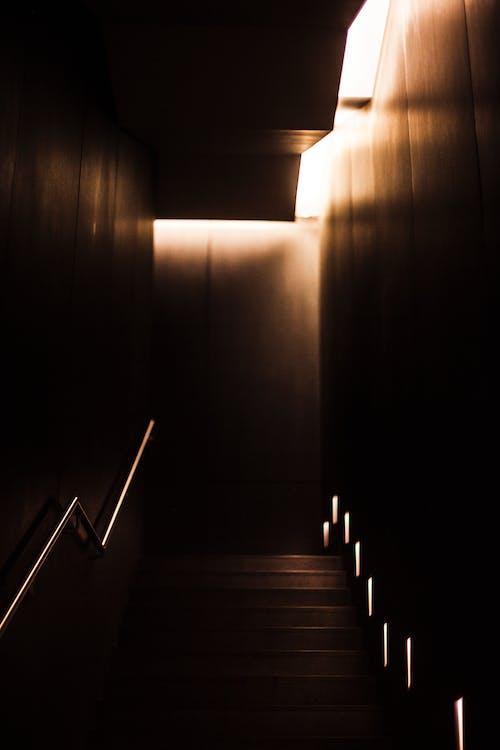 Foto d'estoc gratuïta de arquitectura, descoratjador, empinat, escala