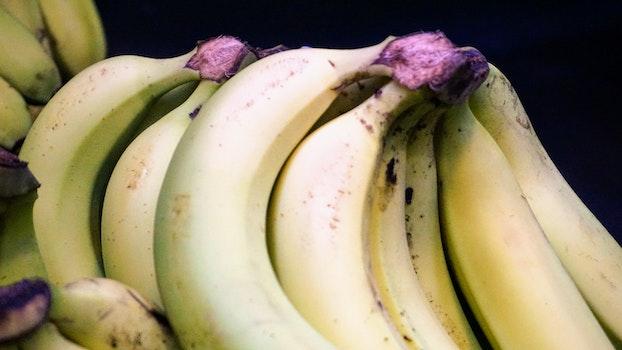 Free stock photo of yellow, banana, fruit