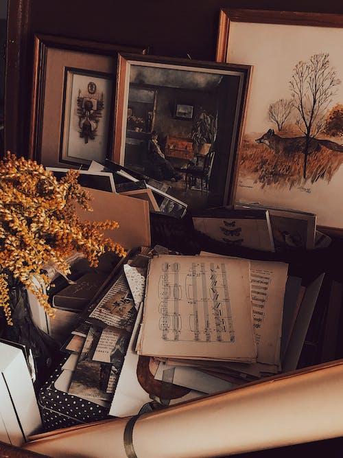 Δωρεάν στοκ φωτογραφιών με vintage, αποξηραμένα άνθη, αποξηραμένα λουλούδια