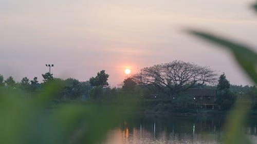Darmowe zdjęcie z galerii z zachód słońca