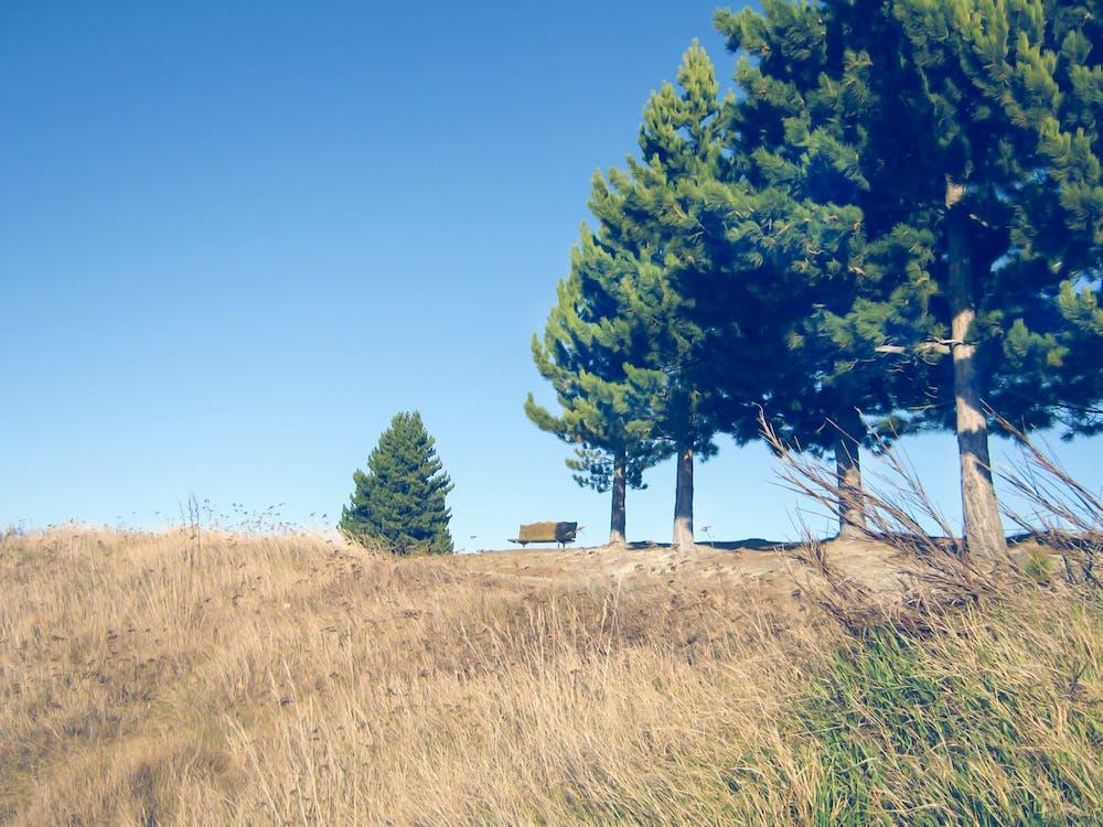 cielo azzurro, estate, minimalista