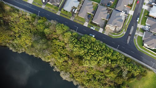 Aerial View of Green Trees and Houses Near a River