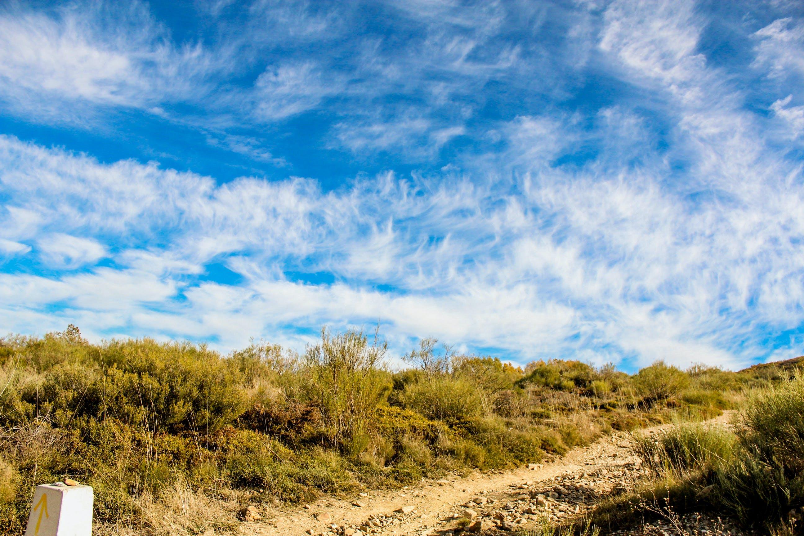 błękitne niebo, chmury, droga