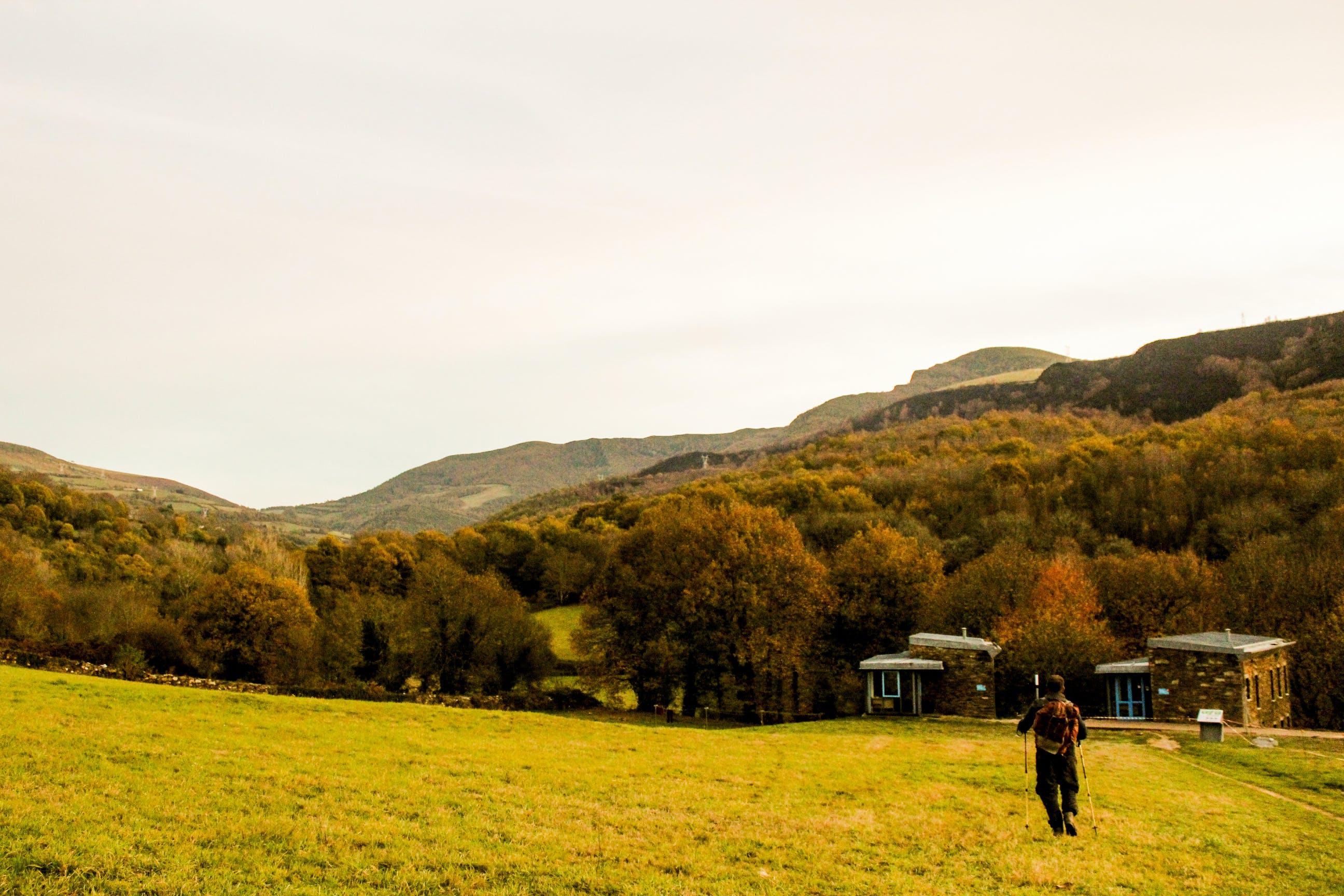 Základová fotografie zdarma na téma cesta, denní světlo, dobrodružství, farma