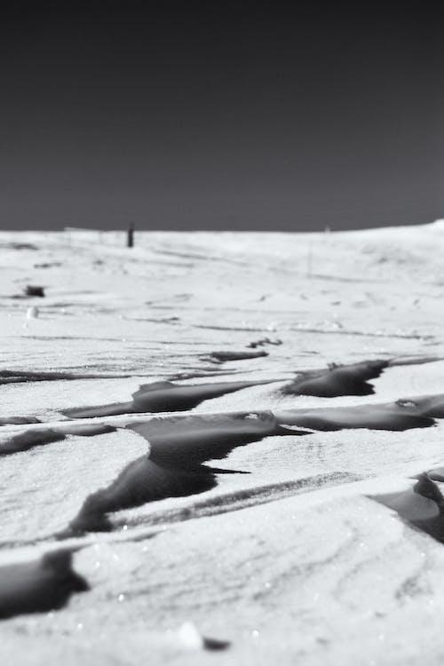 Základová fotografie zdarma na téma bílá, černobílý, krajina, led