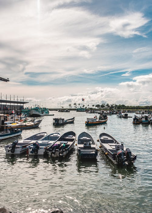 Free stock photo of mercado de mariscos panamá, panama