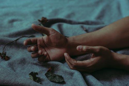 Fotos de stock gratuitas de hojas secas, humano, manos, manta
