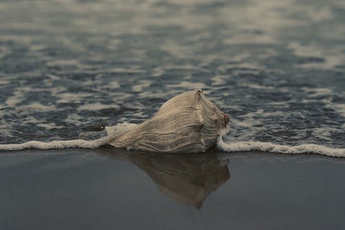 Fotobanka sbezplatnými fotkami na tému breh, exteriéry, krajina, krajina pri mori