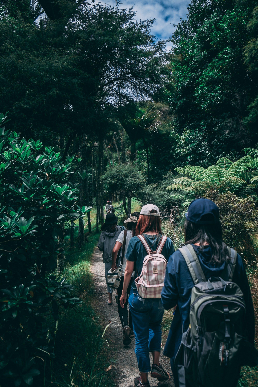 alam, backpacker, berjalan