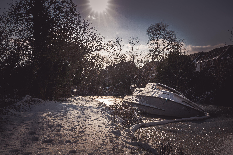 Kostenloses Stock Foto zu bäume, boot, eis, frost