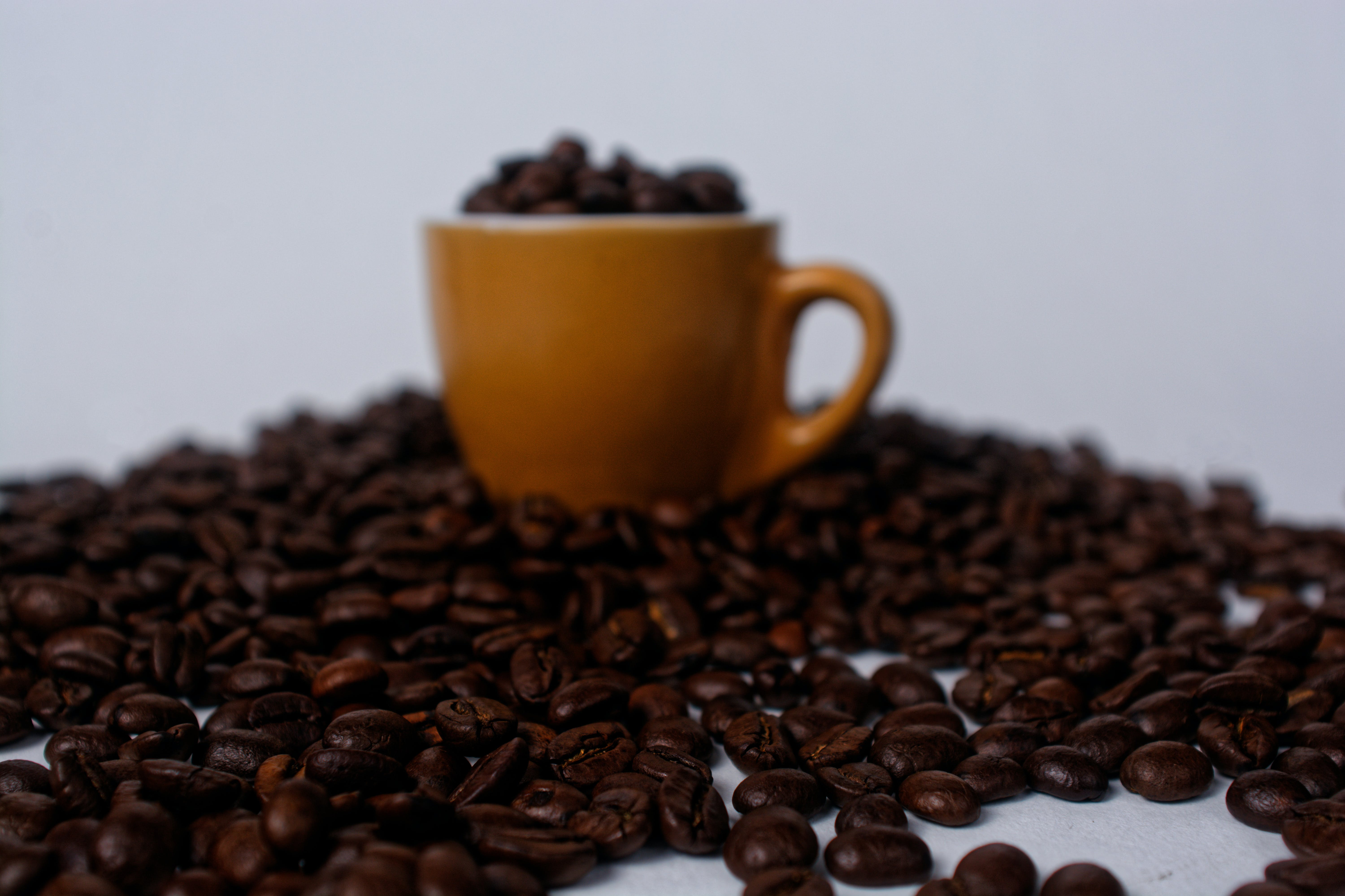 Brown Mug Filled With Coffee Beans