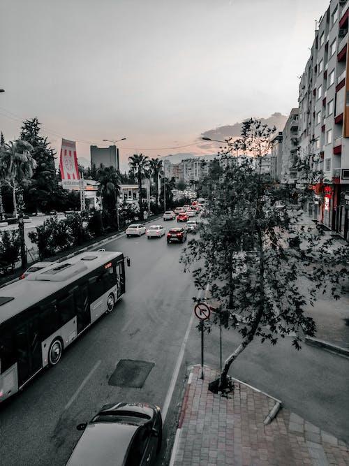 Free stock photo of antalya, big city, red and black background