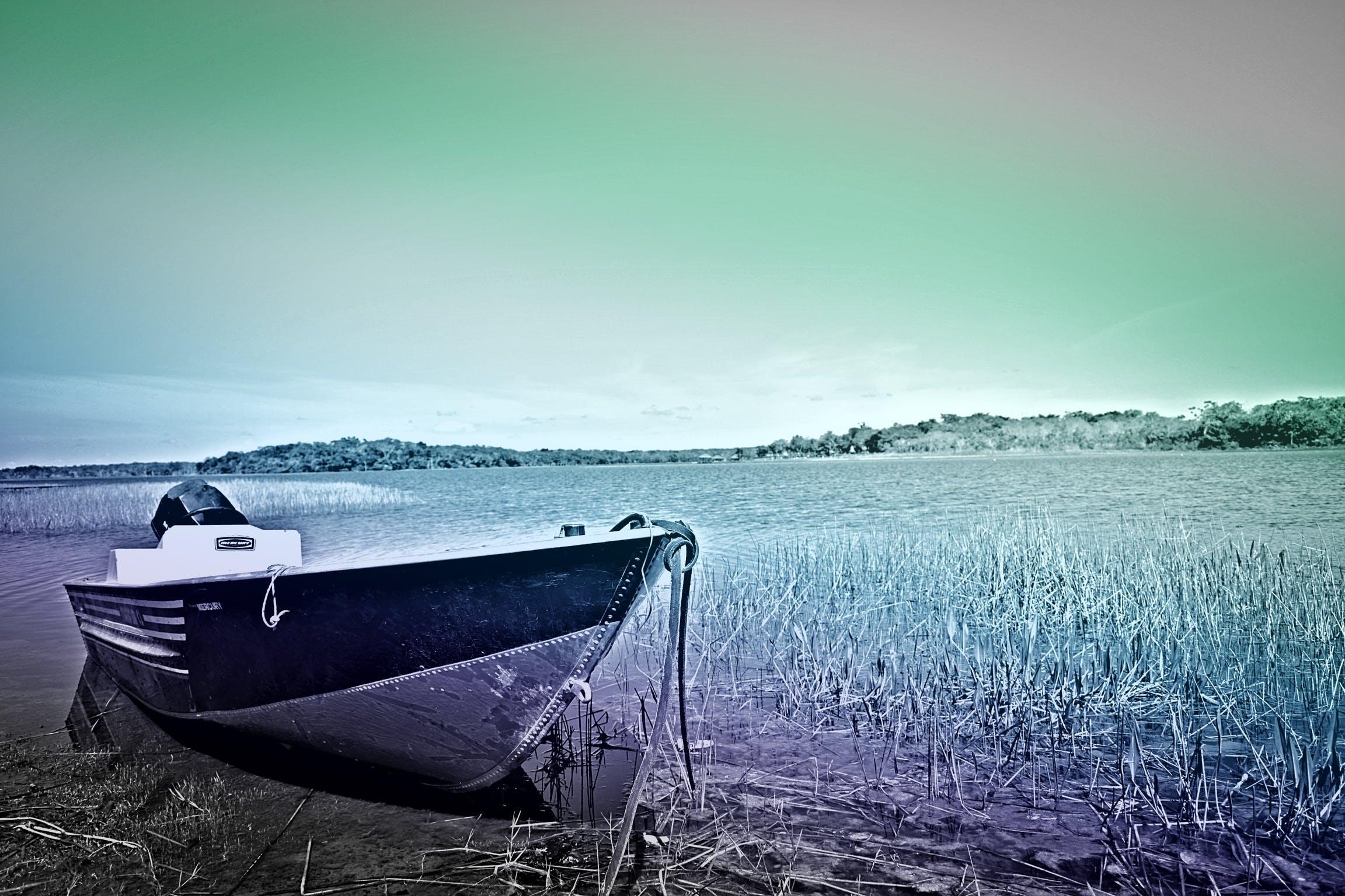 Foto d'estoc gratuïta de àncora, art, barca, canyes