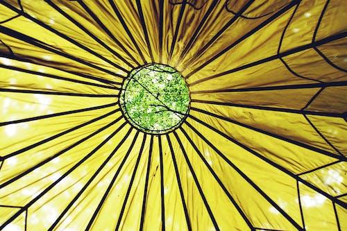 Безкоштовне стокове фото на тему «візерунок, дах, дерево, зелений»