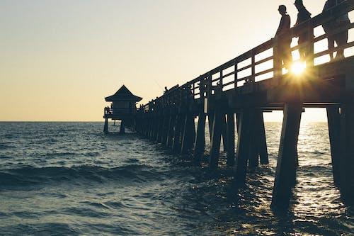 人, 岸邊, 日落, 水 的 免費圖庫相片