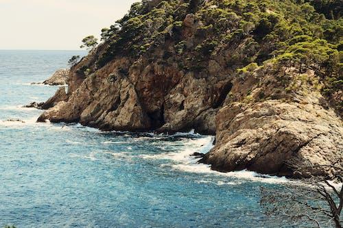 Brown Islet Rock