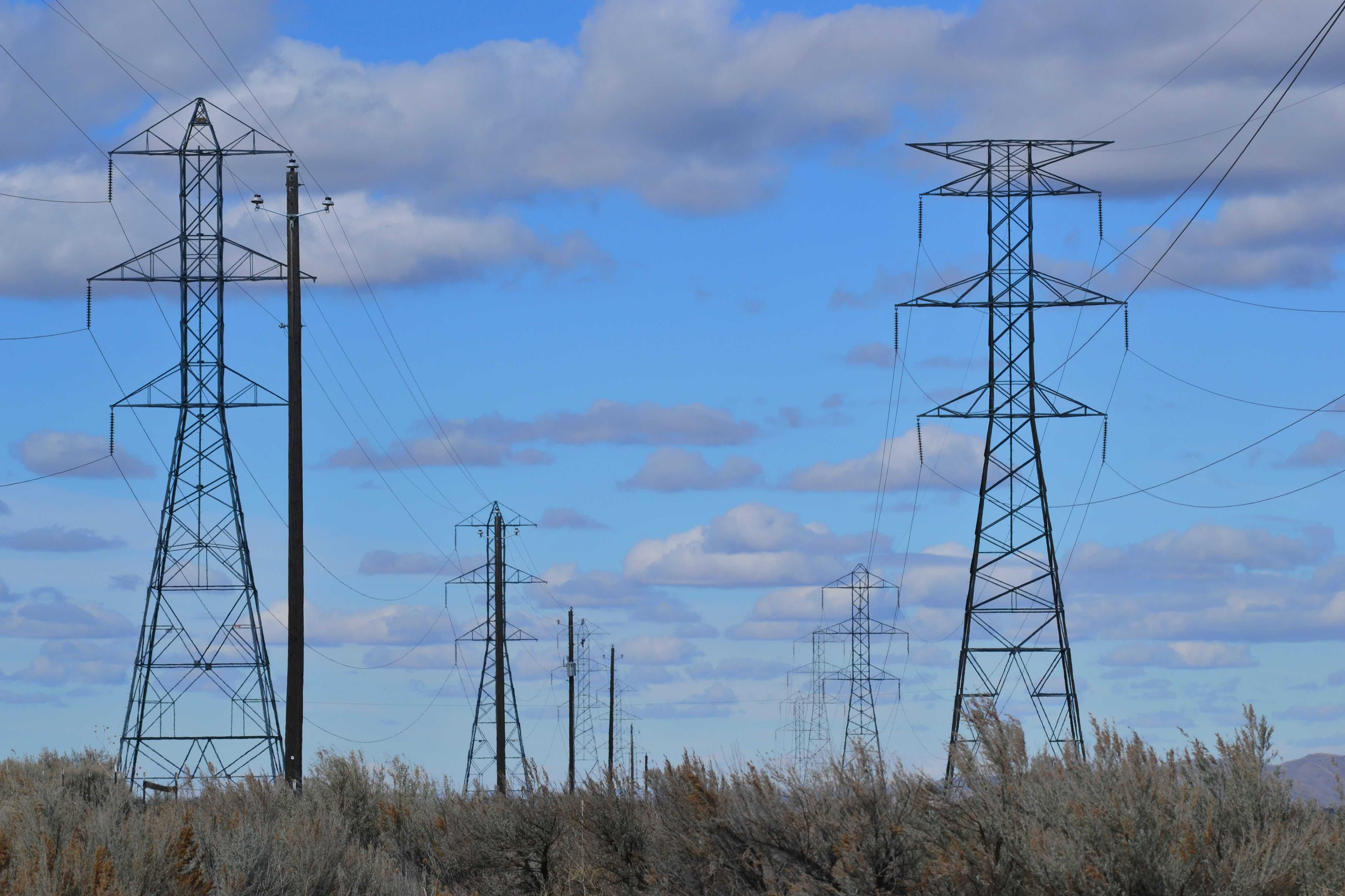 Gray Electric Posts