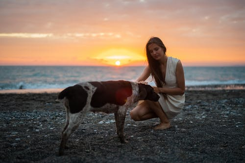 A Woman in a White Dress Petting a Dog
