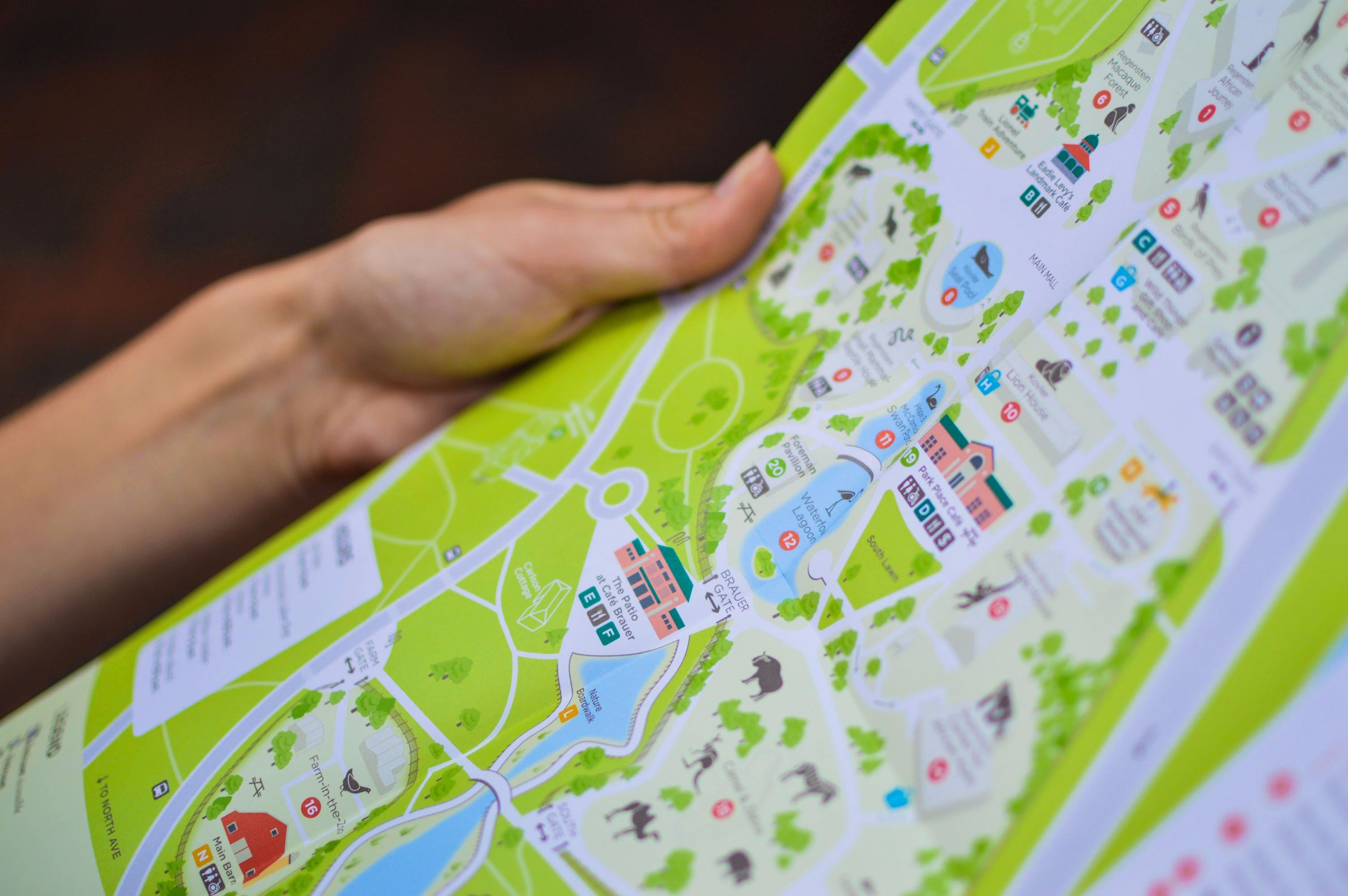 Person Holding City Map
