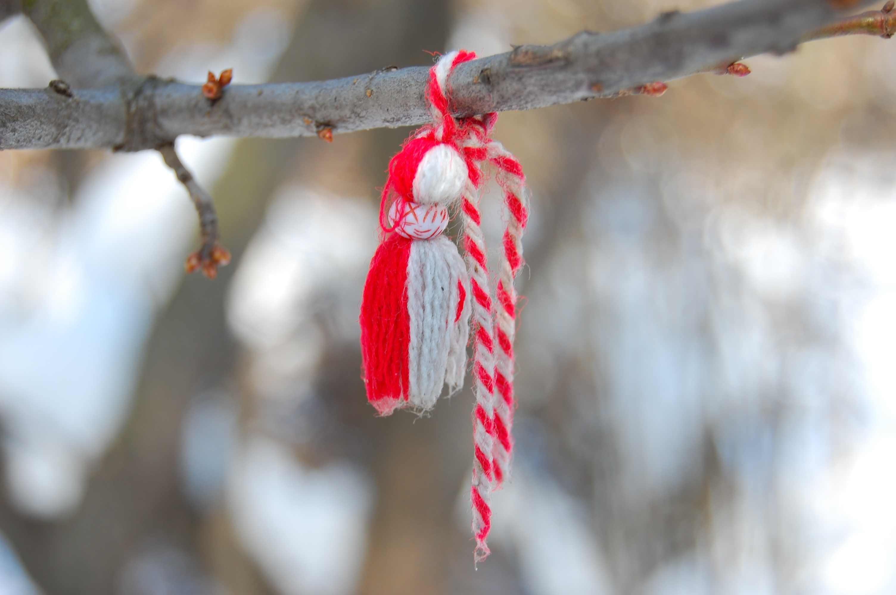 Free stock photo of Martenitsa, tradition