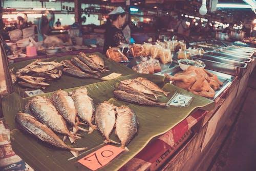 Foto stok gratis chiang mai, kelas memasak, pasar thailand, Thailand