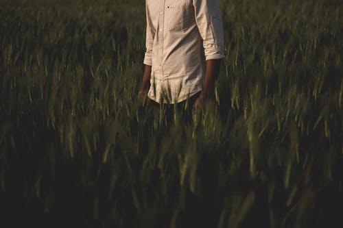 Man Surrounded Grass