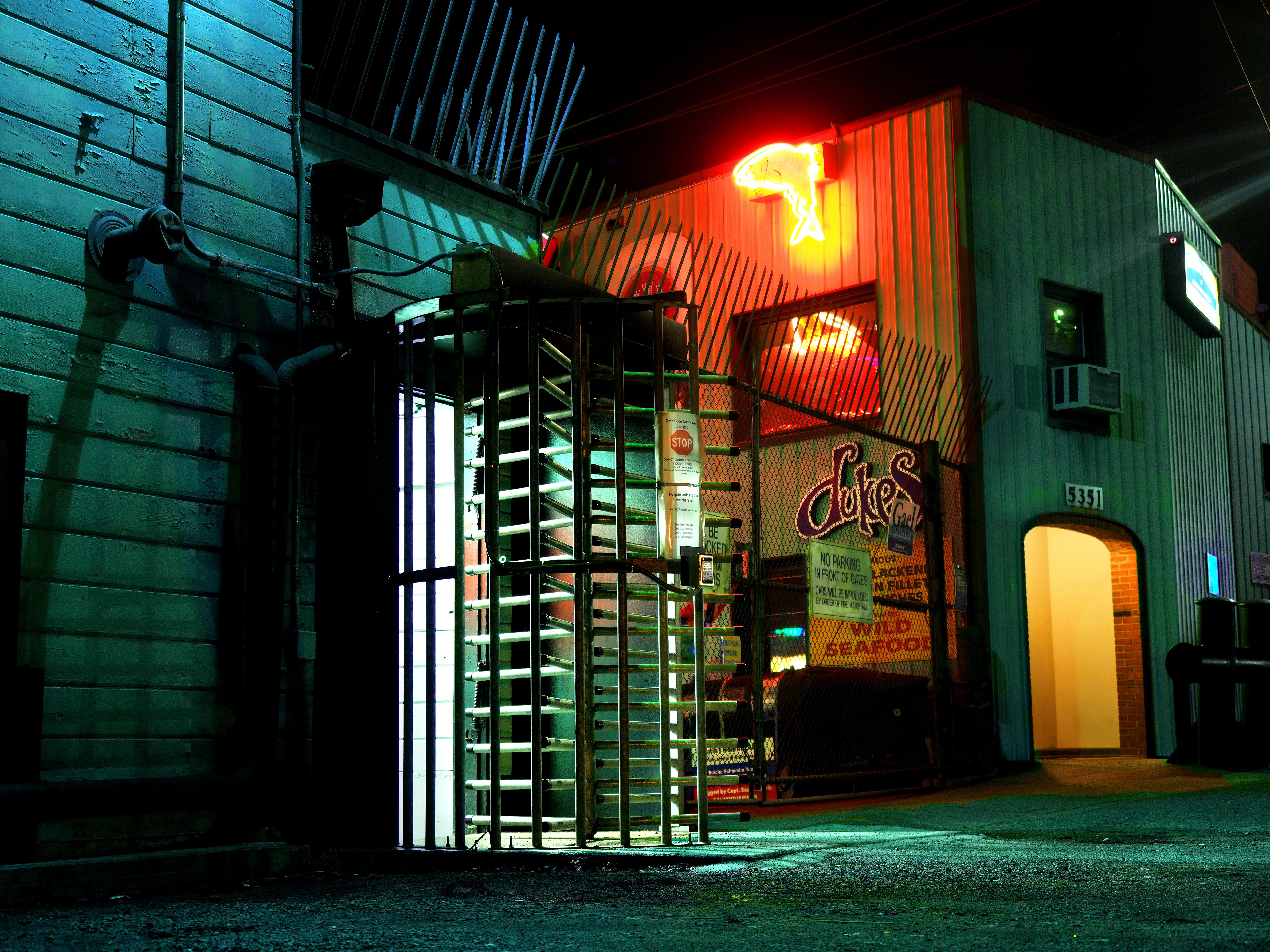 Free stock photo of dock, door, glow, neon