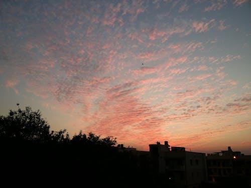 하늘, 햇빛 가리개의 무료 스톡 사진