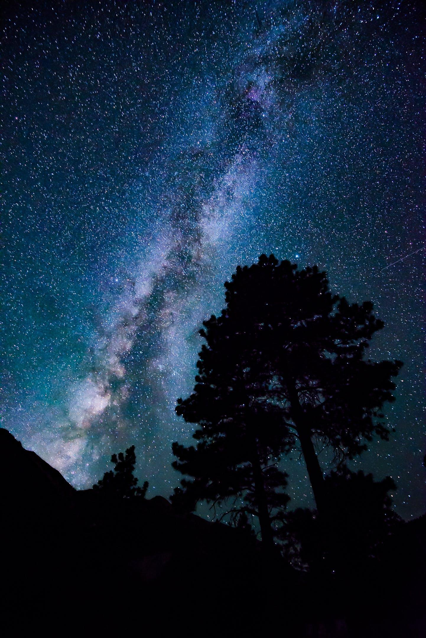 Low-angle Photograph of Stars