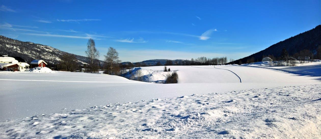 cênico, clima, coberto de neve