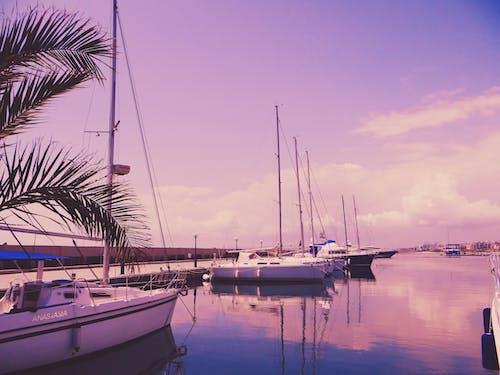 Immagine gratuita di acqua, alba, baia, barche