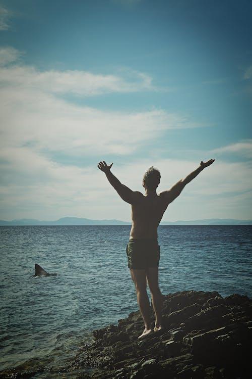 atlet, blå himmel, haj