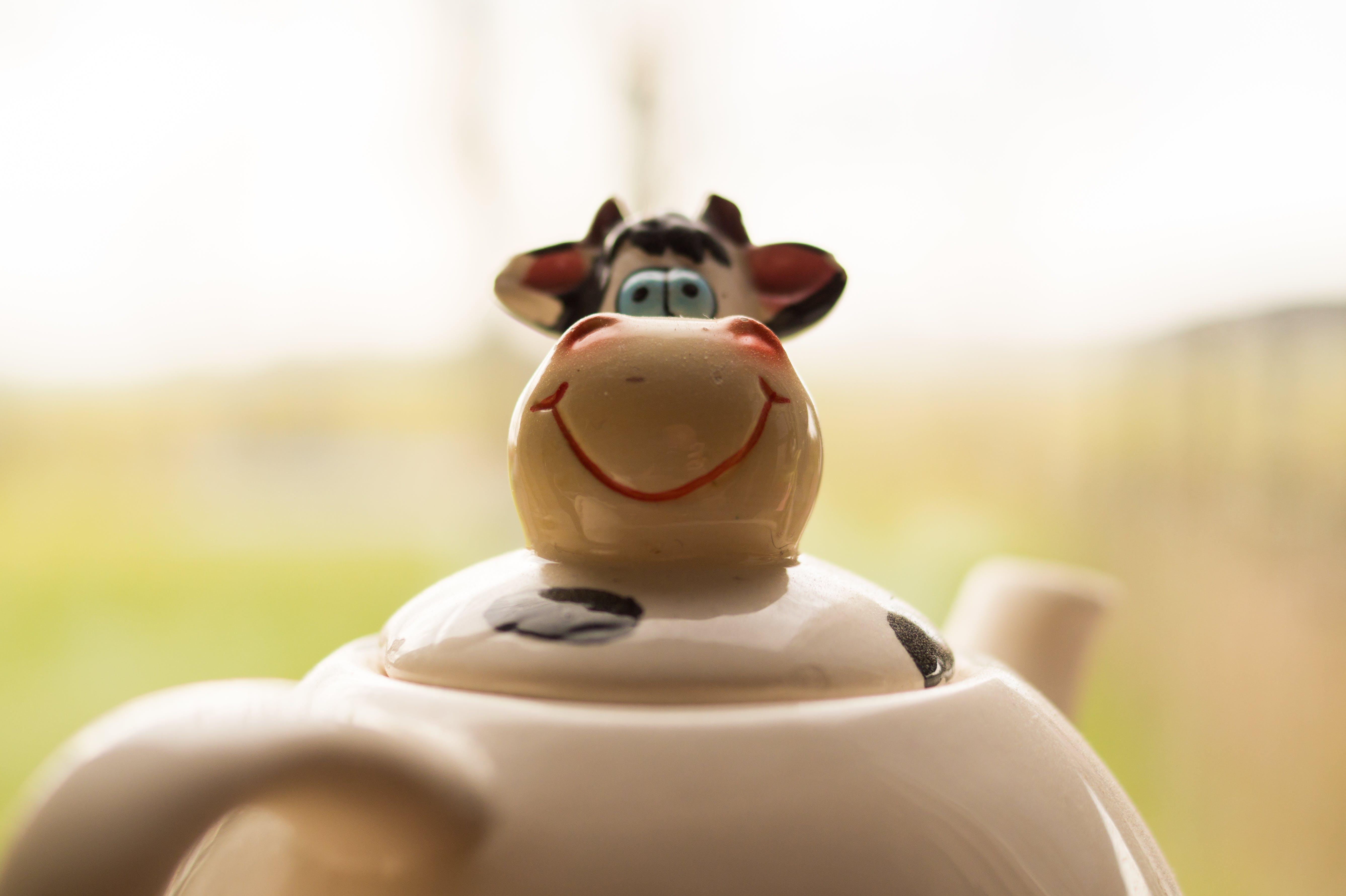 White and Black Ceramic Cattle Teapot Photo