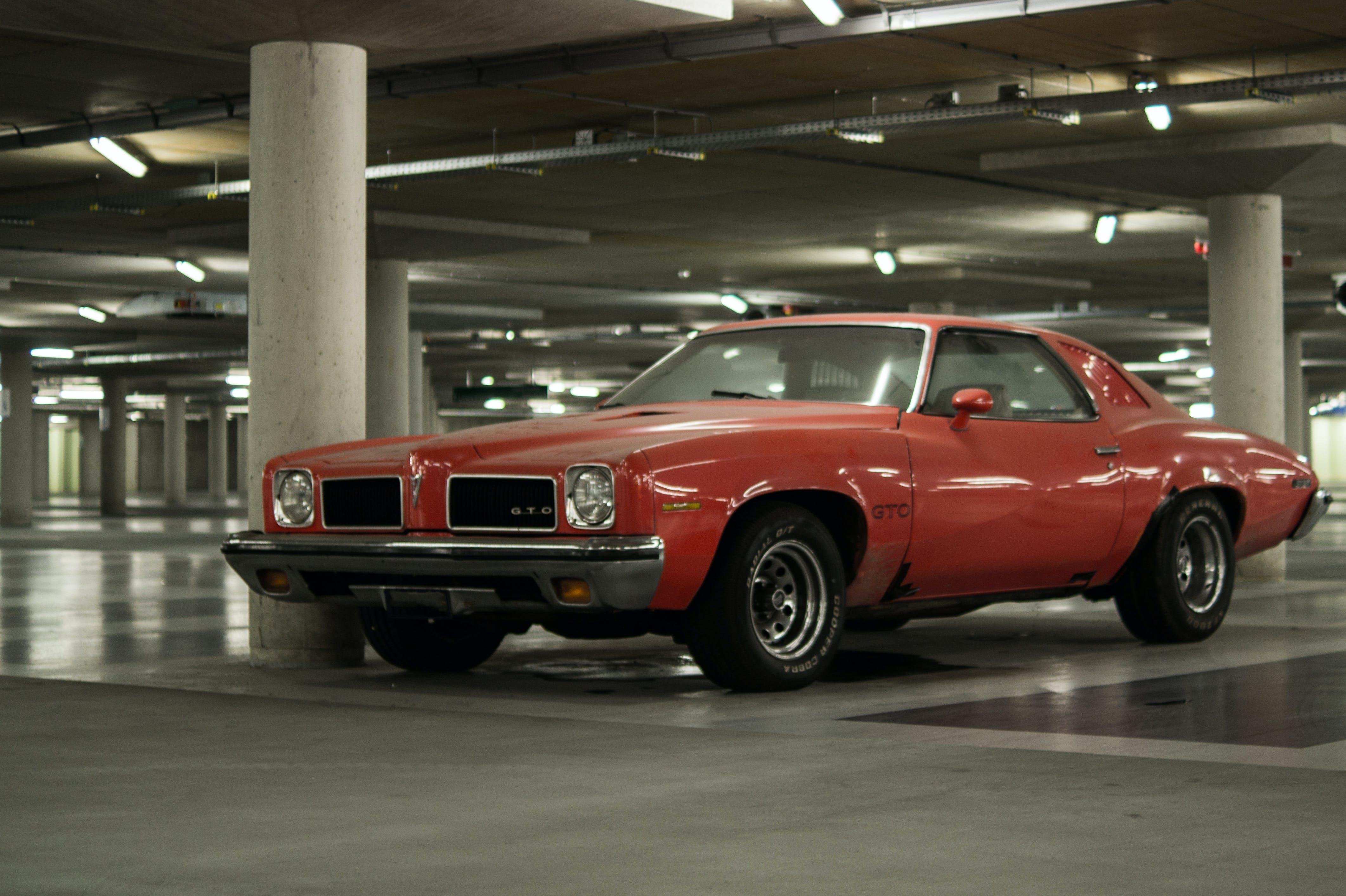 car, GTO, muscle car