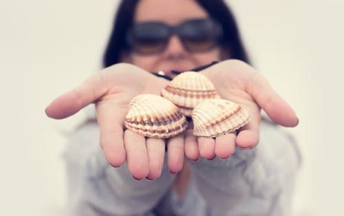 Free stock photo of conchas, girl, hands, sea