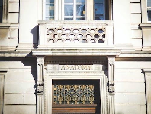 Fotos de stock gratuitas de al aire libre, anatomía, arquitectura, balcón