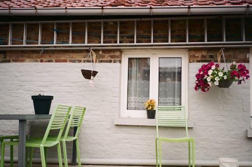Green Wooden Chair Beside Window