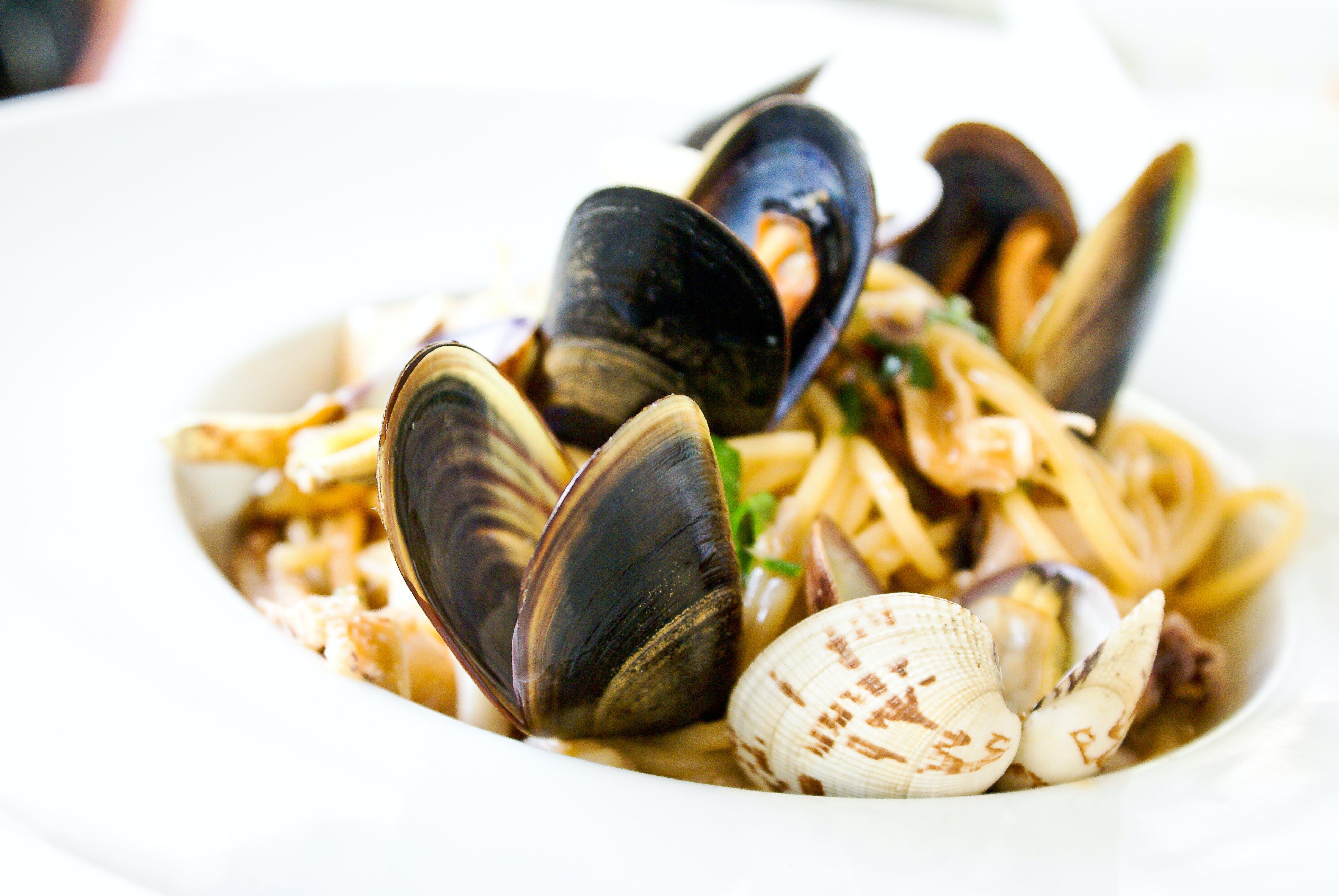คลังภาพถ่ายฟรี ของ spaghetti allo scoglio, การถ่ายภาพอาหาร, ครัสเตเชียน, จาน