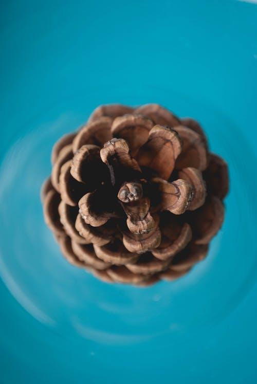 Бесплатное стоковое фото с вода, голубой, минимализм, минимальный