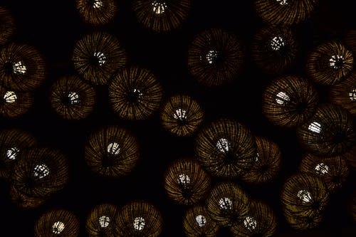低角度拍攝, 光, 圖案, 漆黑 的 免费素材照片